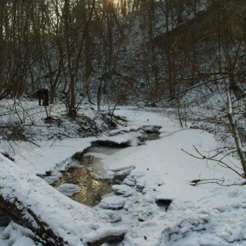 Zimowa ekstrema - zdjęcie