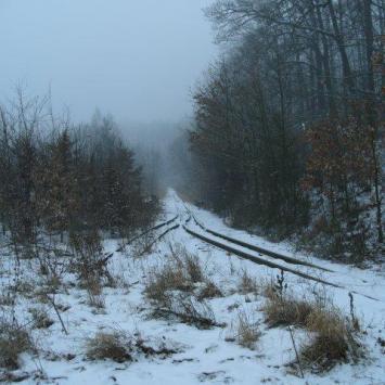 Krajna zimą - zdjęcie