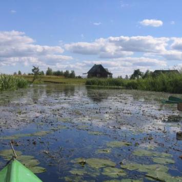 Rzeka Biebrza i okolice - zdjęcie