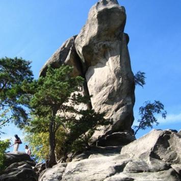 Rezerwat przyrody - Prządki - zdjęcie