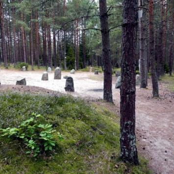 Kamienne Kręgi - Węsiory - zdjęcie