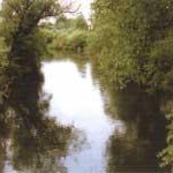 spływ kajakowy po Drwęcy - zdjęcie