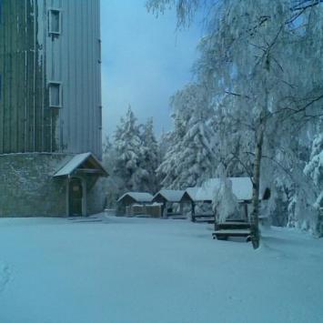 W rakietach śnieżnych na Górę Borówkową