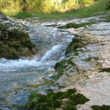 Rezerwat Przyrody Biała Woda - zdjęcie