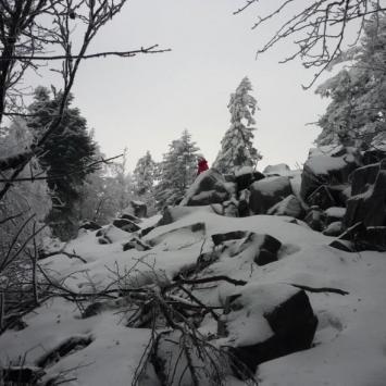 Góry Świętokrzyskie - Łysogóry