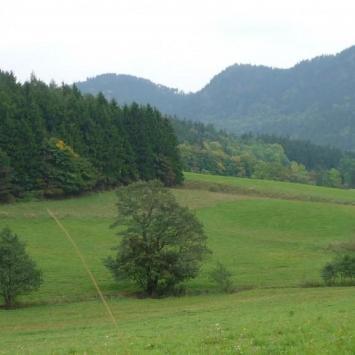 Góry Wałbrzyskie i Kamienne