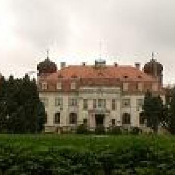 Pałac Donnersmarcków w Brynku (woj. śląskie, powiat tarnogórski) - zdjęcie