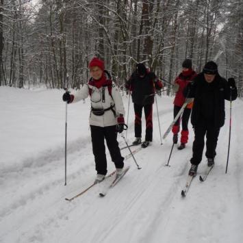 Przygoda z nartami w Puszczy Kozienickiej - zdjęcie