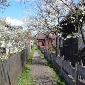 Borek-dzielnica drewnianych domów