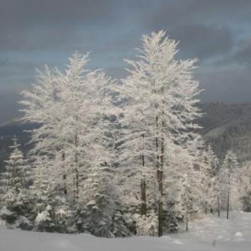 Beskid Mały zimą