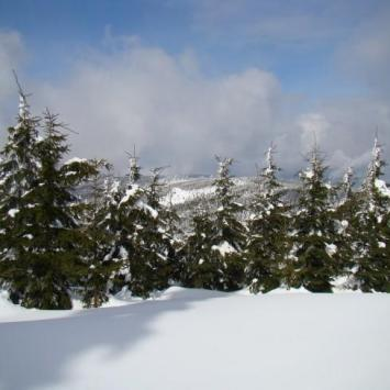 Na Śnieżnik Kłodzki Z Międzygórza