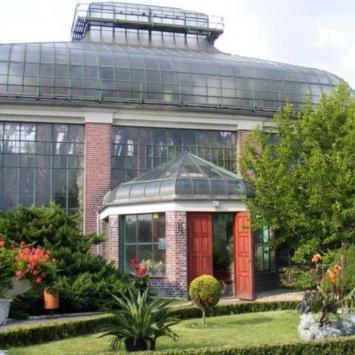 Palmiarnia w Wałbrzychu Lubiechowie