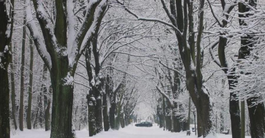 WPKiW zimą - zdjęcie