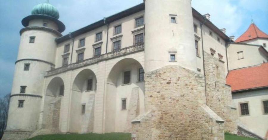 Zamki w Nowym Wiśniczu i Dębnie - zdjęcie