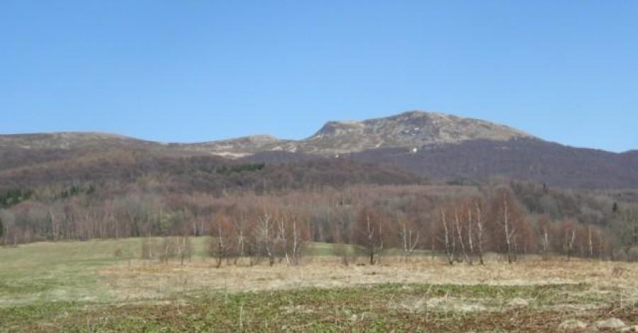 Tarnica - zdjęcie