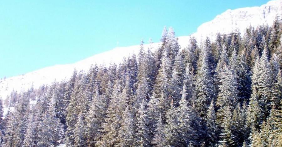 Zimowe Zakopane - zdjęcie