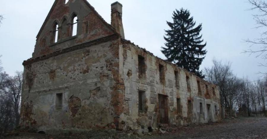 Mycielin - ruiny zespołu parkowo pałacowego. - zdjęcie