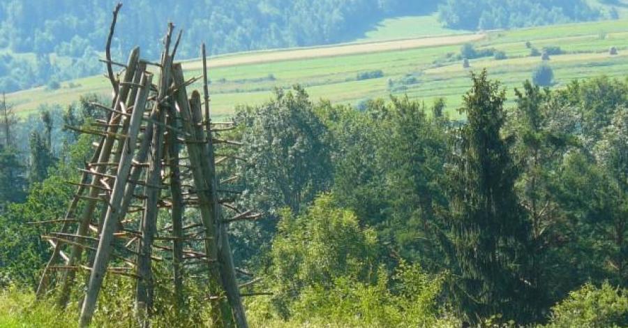 Grzebień - 677 m.n.p.m. - zdjęcie