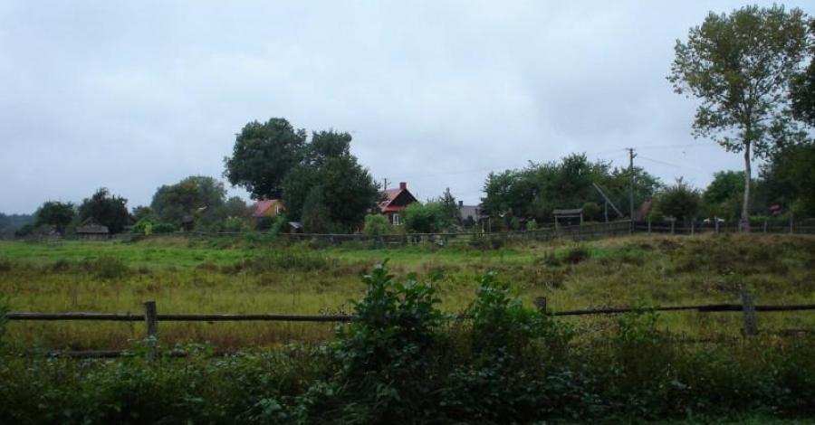 Wycieczka do Rezerwatu Koni Biłgorajskich w Szklarni oraz na Porytowe Wzgórze - zdjęcie