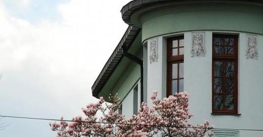 Szlakiem kwitnącej magnolii - zdjęcie