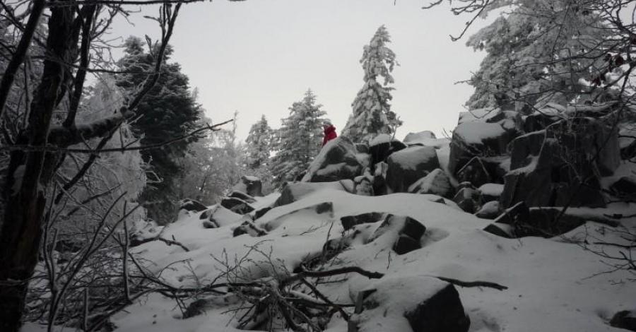 Góry Świętokrzyskie - Łysogóry - zdjęcie