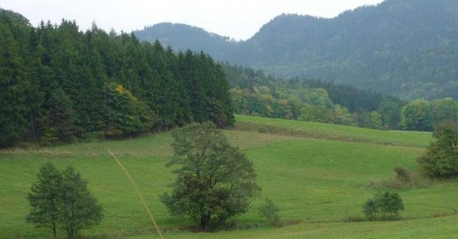 Góry Wałbrzyskie i Kamienne - zdjęcie