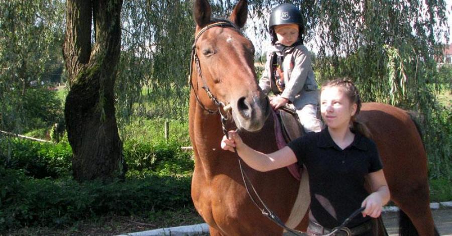 Zbrosławice - coś dla miłośników koni - zdjęcie