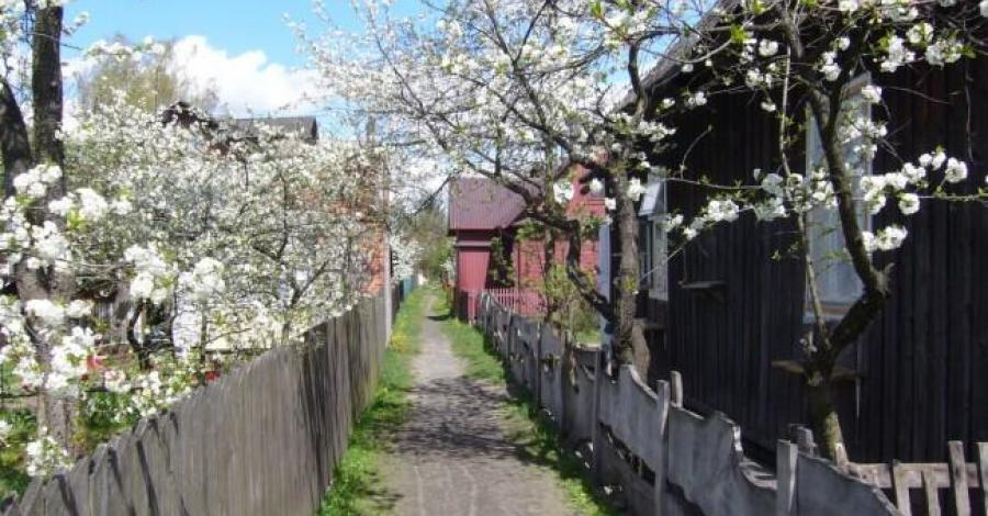 Borek-dzielnica drewnianych domów - zdjęcie