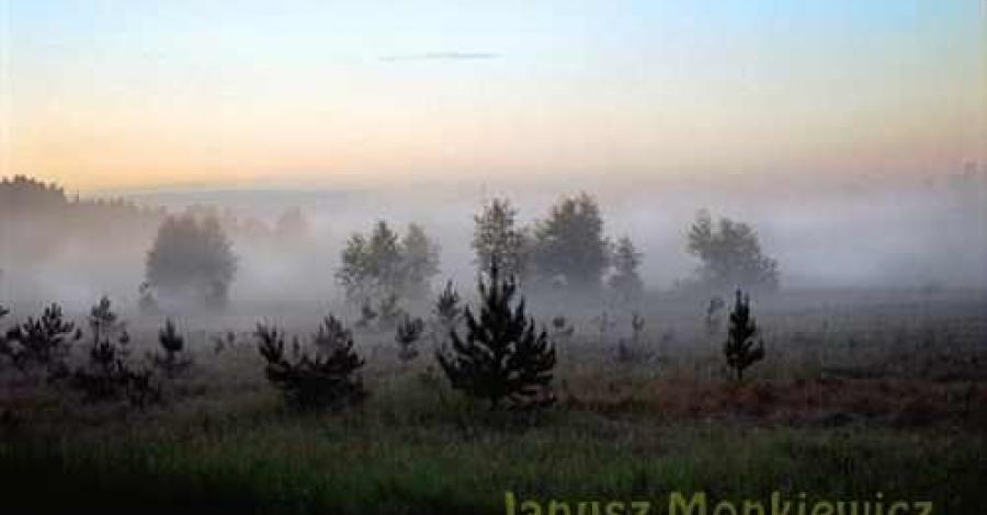 Puszcza Piska - zdjęcie