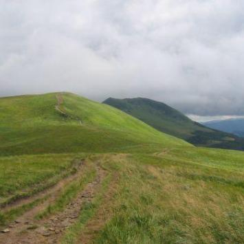 Ścieżka Salamandra w Bieszczadach