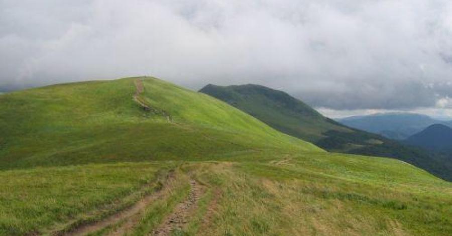 Ścieżka Salamandra w Bieszczadach - zdjęcie