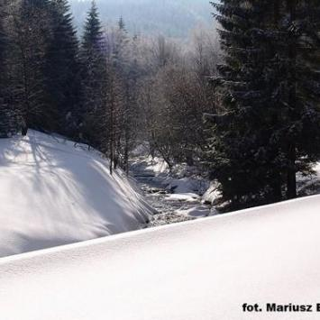 Art Ski w Bielicach