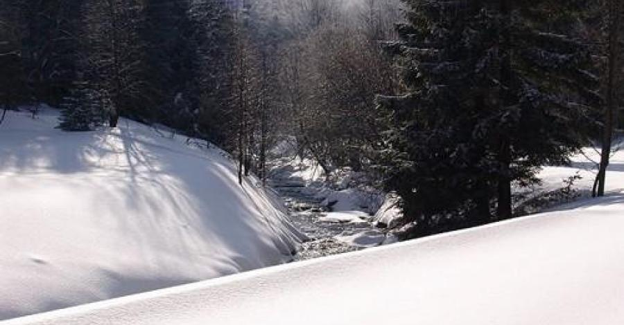 Art Ski w Bielicach - zdjęcie