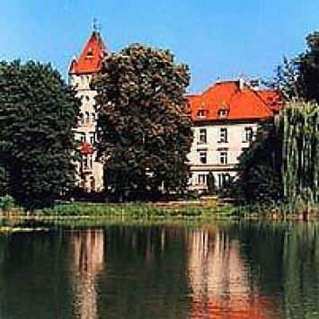 Zamek w Osiecznej - zdjęcie