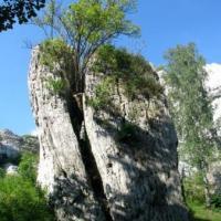 Ostaniec na Górze Birów