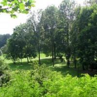 Park w Korzkwi