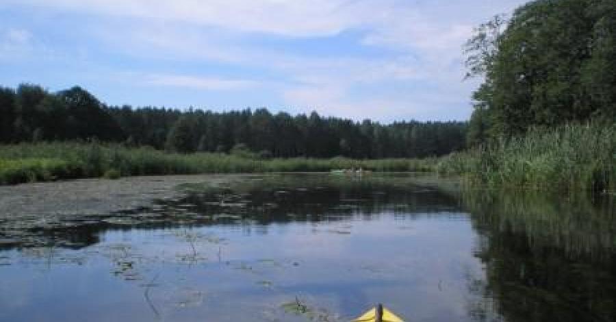 Spływ kajakowy rzeką Krutynią - zdjęcie