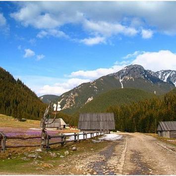 Dolina Chochołowska - zdjęcie