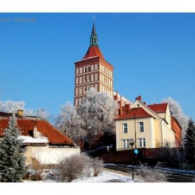 Katedra w Olsztynie