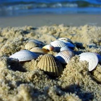 plaża Świnoujście