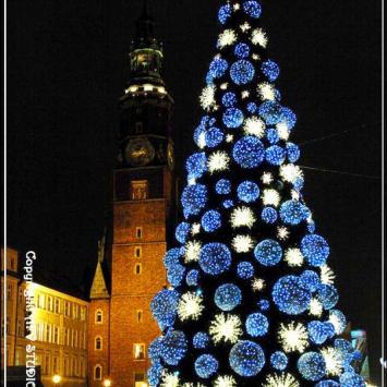 Świąteczny Wrocław - zdjęcie
