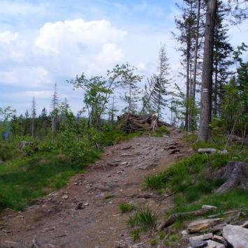 Stożek w Beskidzie Śląskim