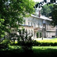 Pałac w Żywcu