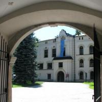 Zamek w Żywcu