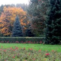Chorzowski Park