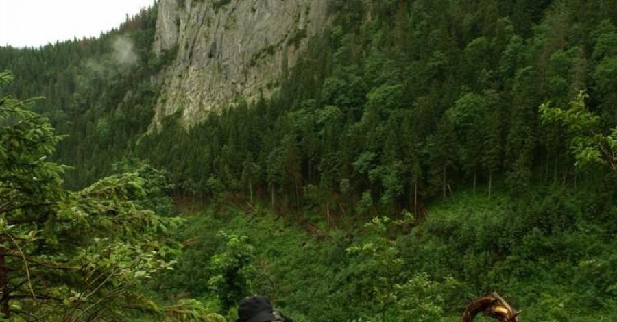 Przełęcz pod Kopą - zdjęcie
