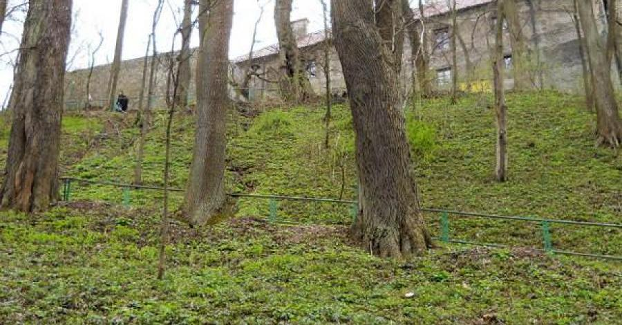 Pieskowa Skała - wiosną ... - zdjęcie