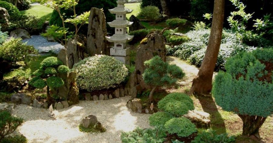 Ogród Japoński w Jarkowie - zdjęcie