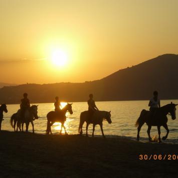 Kreta - tam gdzie skaczą kozy kri kri. - zdjęcie