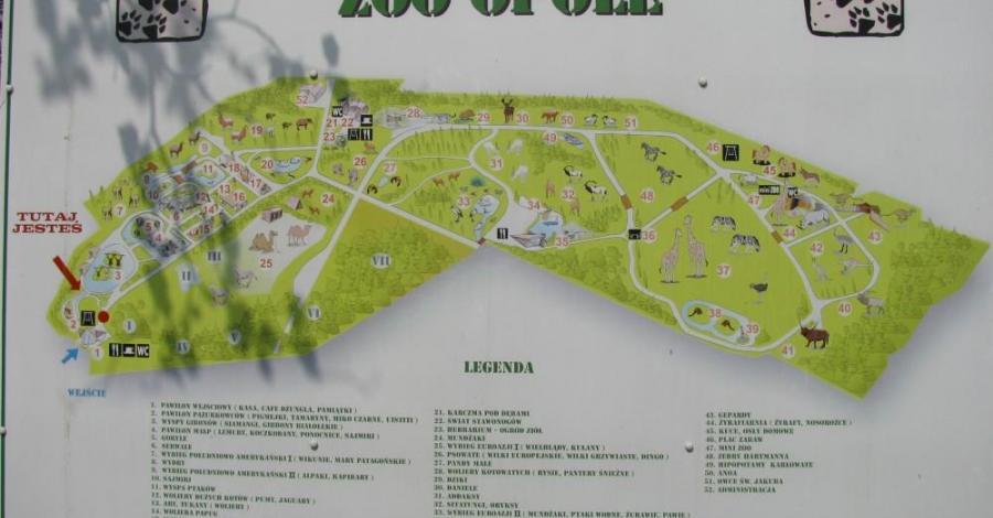Zoo i skansen w Opolu. - zdjęcie